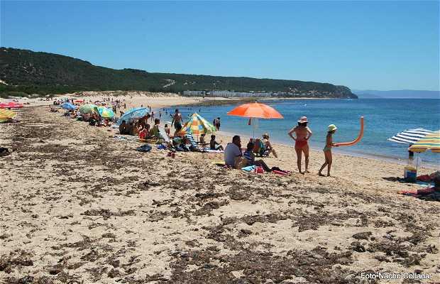 Playa de Marisucia