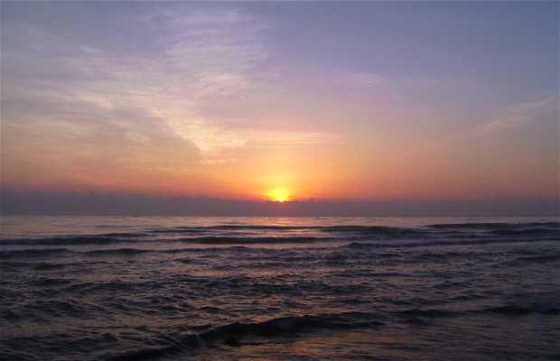 Spiagge di Tecolutla in Messico