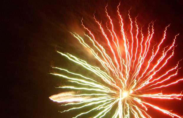 Exhibition Fireworks