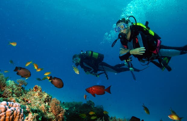 Buceo en Zanzibar-Aquarium