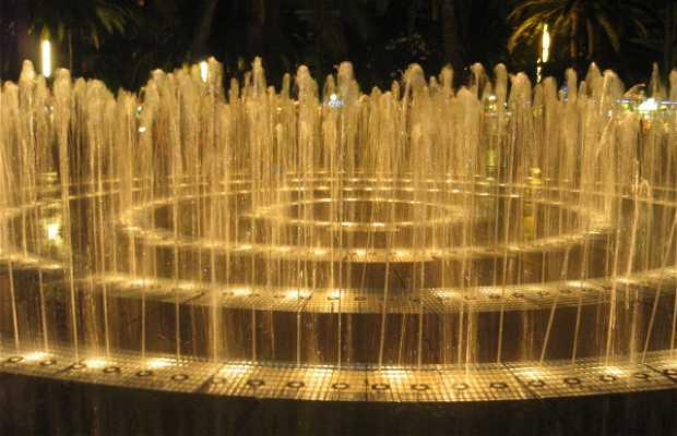 Font Lluminosa (Illuminated Fountain)