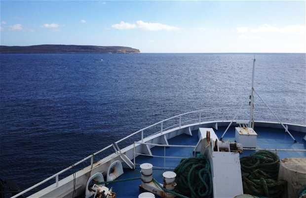 Ferries Gozo Channel Line