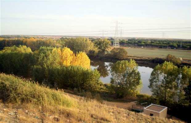 Río Duero a su paso por Tordesillas