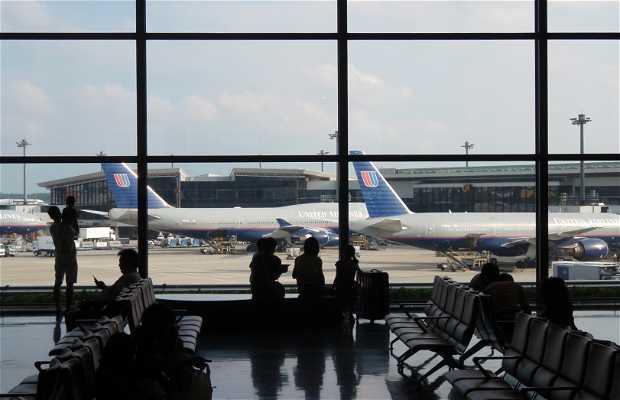 Aeropuerto Narita