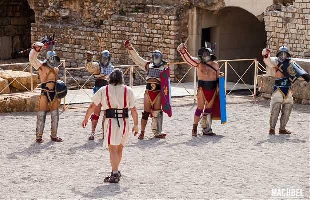 Lucha de gladiadores en Tarraco Viva