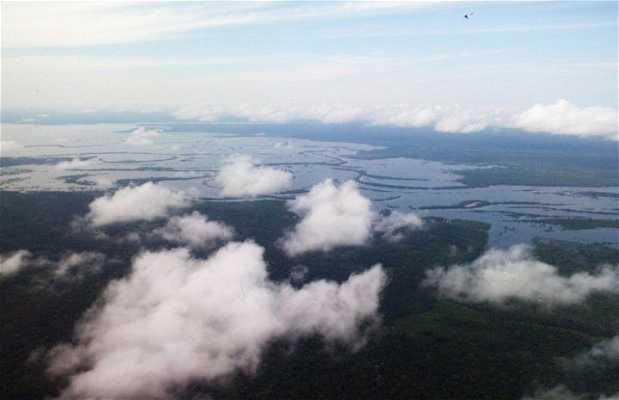 Paseo en helicóptero en la selva amazónica