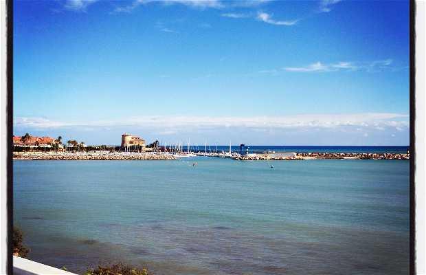 Playa El Puerto
