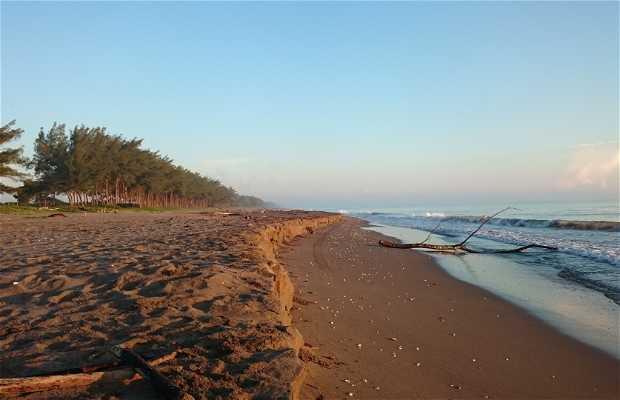 Playa Vilamar
