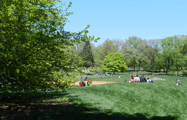 East Meadow (Central Park)