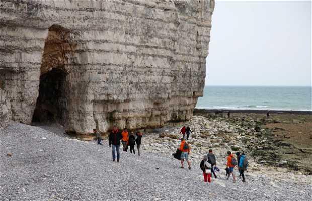Cueva de Yport