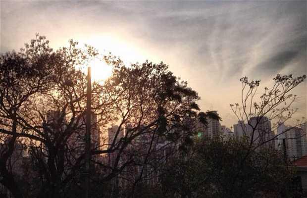 Jardim São Paulo