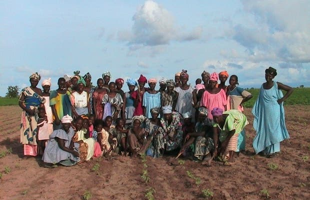 Women of Ngayene Economic Interest Group