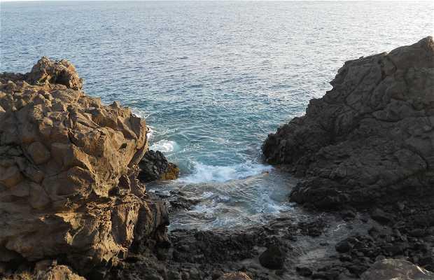 Reserva natural especial del Malpaís de la Rasca