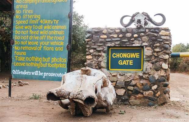 Chongwe Gate
