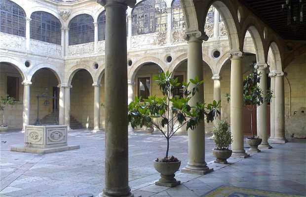 Palacio de los Guzmanes - Diputación de León