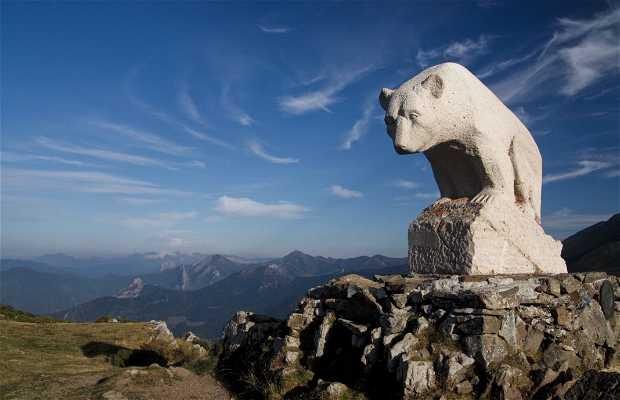 Bear Viewpoint