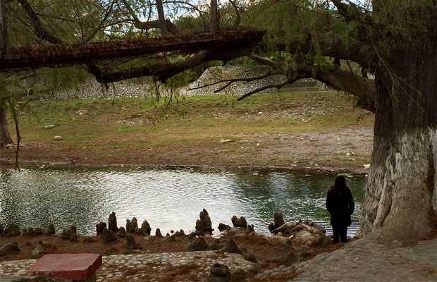 Río Hualahuises