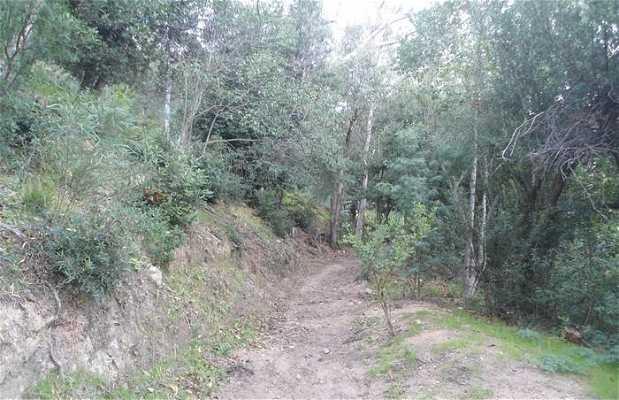 Parque natural del Paradou