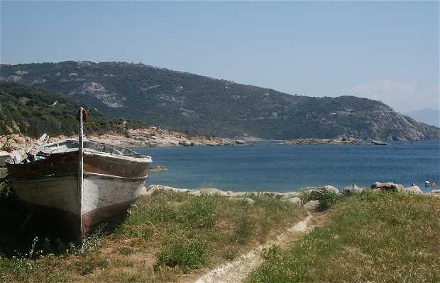 Port de Cargese
