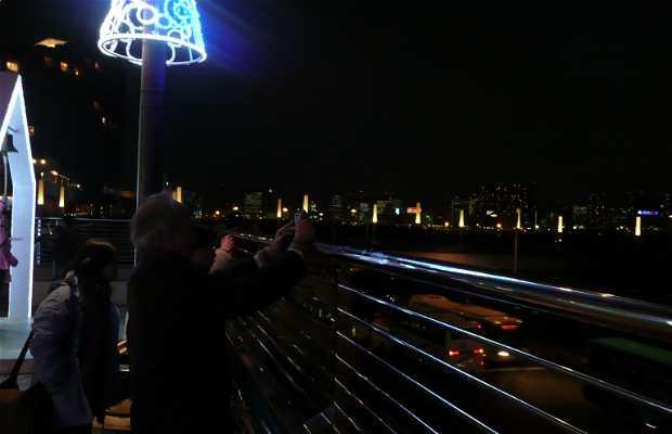 Viewpoint in Odaiba