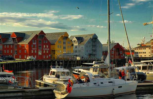 Bryggen Tromso