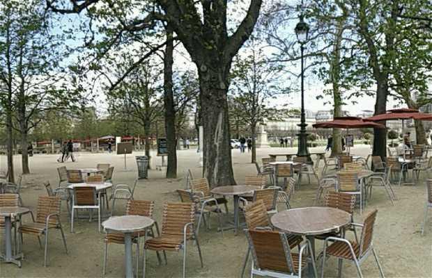 Cafe Reale