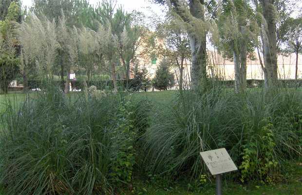 Parc de La Concha
