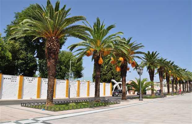 Paseo de las Palmeras o del Monumento