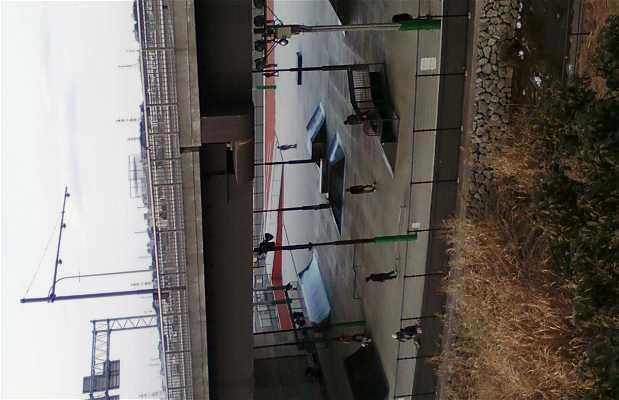 Shin Yokohama Skate Center