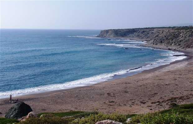 Reserva natural de tortugas (Lara Bay)