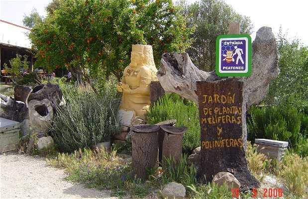 Museo de la Miel de Jerez de la Frontera