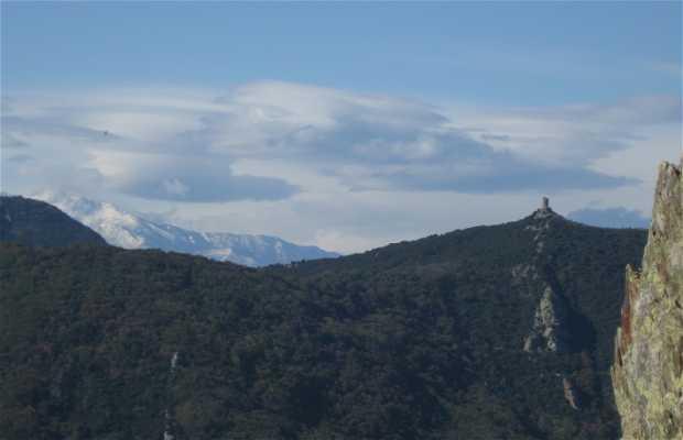 Torre Massane
