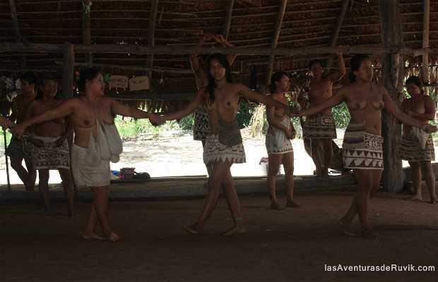 Tribu Boras