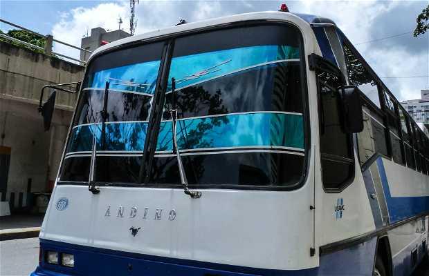 UCAMC Servicios de Transporte CA