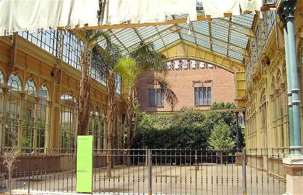 L' Hivernacle di Barcellona