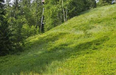 Nels Nelsen historic ski jump