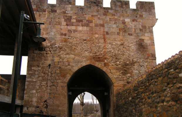 Puerta del Paseo Real o de Santa Maria