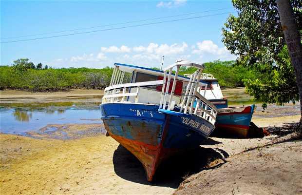 Pontal de Maracaipe Beach