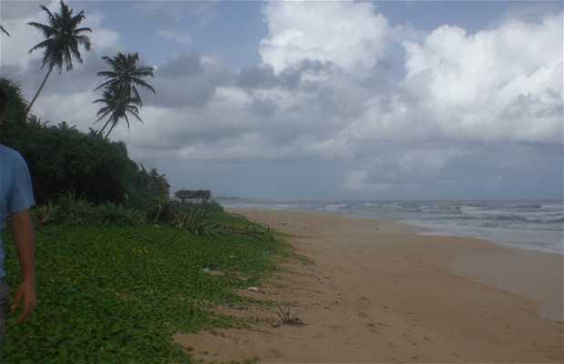 Playas de Koggala