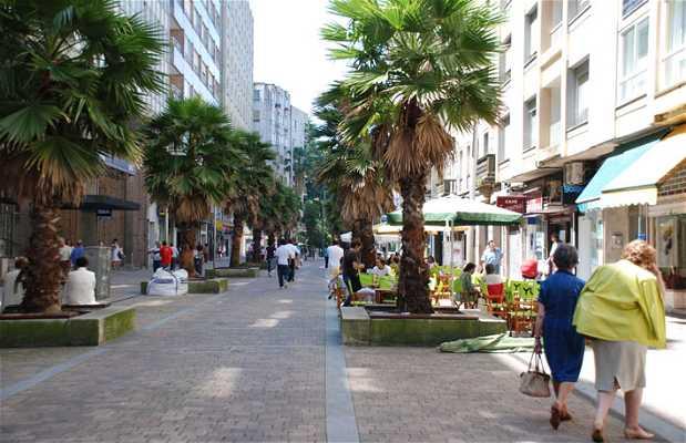 Calle General Gutiérrez Mellado