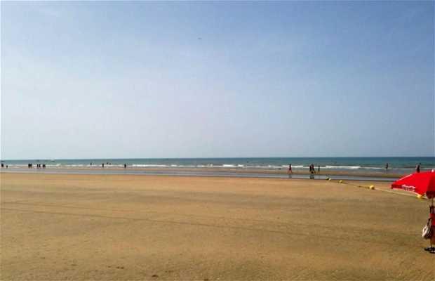 Playa Caño Guerrero