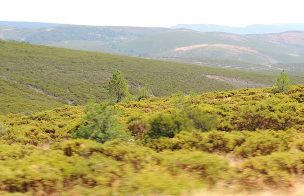 Valle del Arroyo de la Fraga