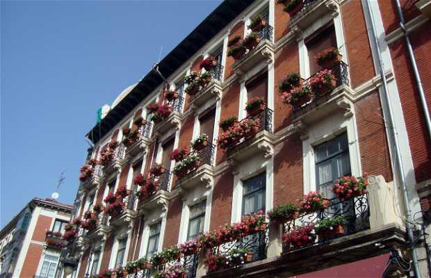 Paseando por Calle Ancha