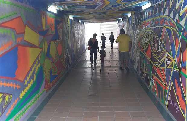 Túnel Guarnizo