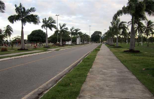 Parque de Sementeira