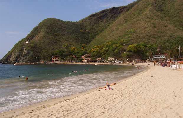 Playa Chuao