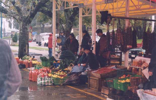 Le mercado municipal de Valdivia