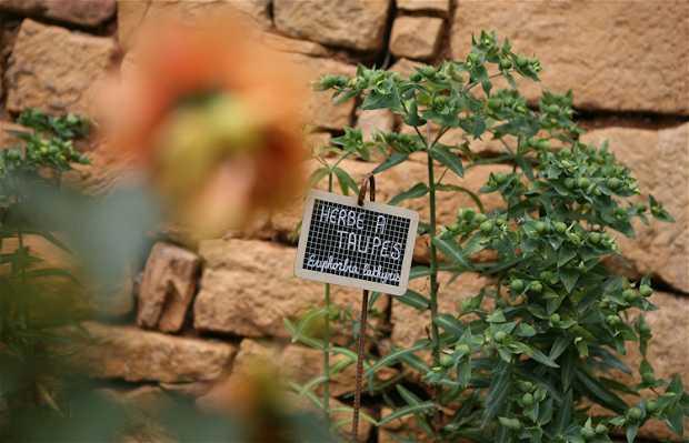 Jardines panoramicos