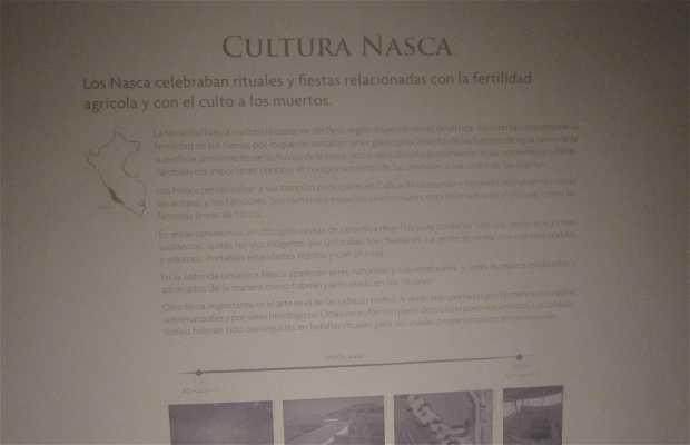 Exposition culture de Nasca
