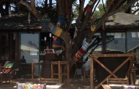 Restaurante Paladar da Guia